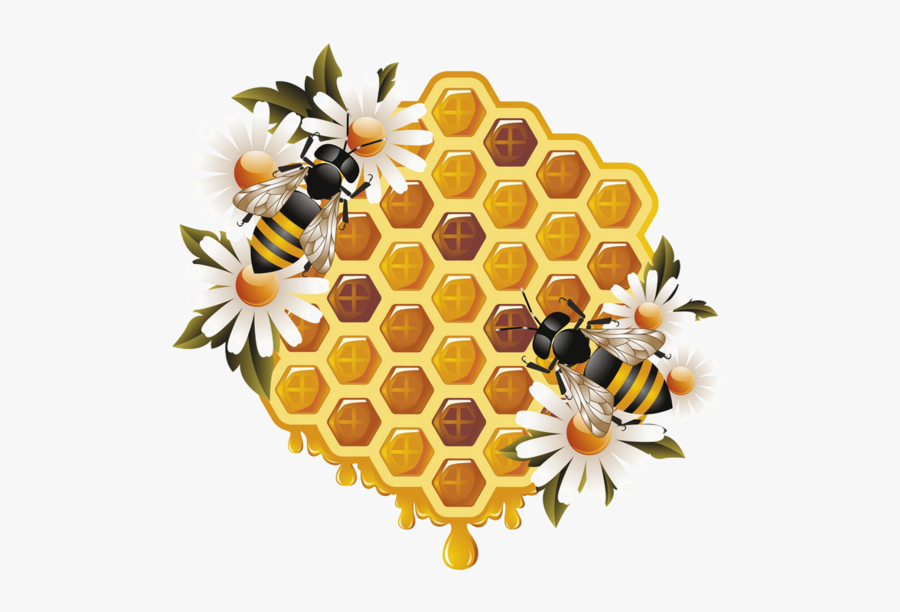 Honey Bees Clipart Eps Vector - Honey And Bee Png, Transparent Clipart