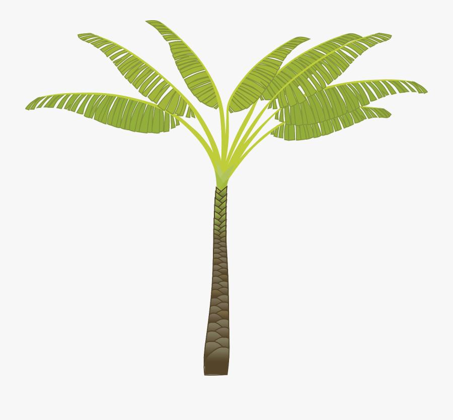 Free Vector Palm Tree Clip Art - Banana Tree Cartoon Transparent, Transparent Clipart