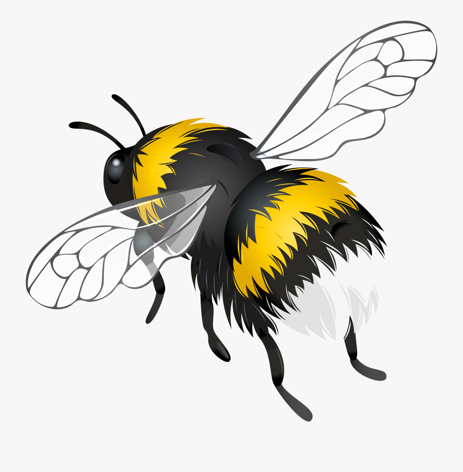 Download Flying Bee Clipart Png Photo - Clip Art Flying Bee, Transparent Clipart