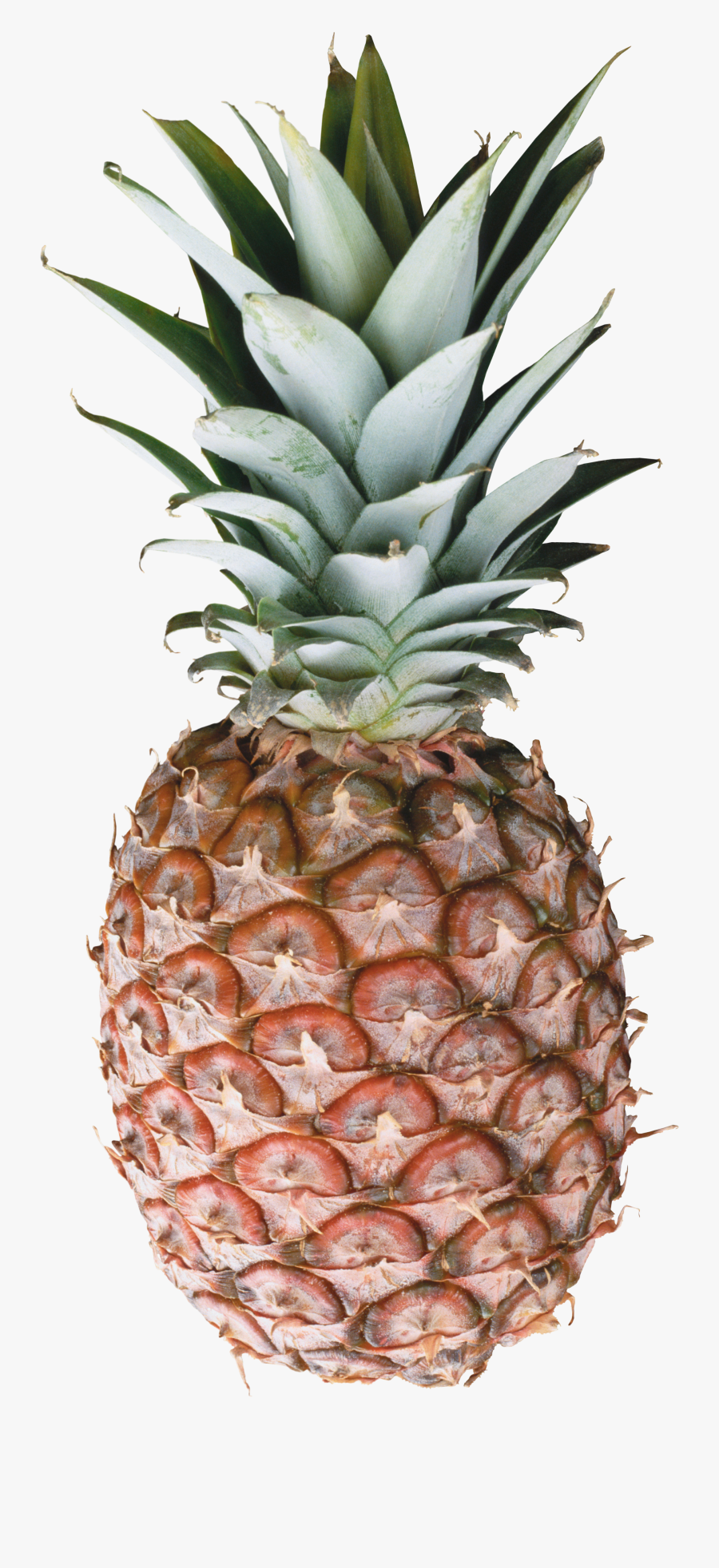 Marble Pineapple, Transparent Clipart