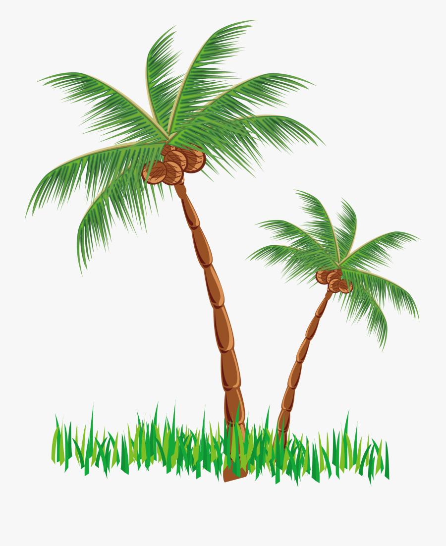Cattle Hut Clip Art - Clip Art Coconut Palm Png, Transparent Clipart
