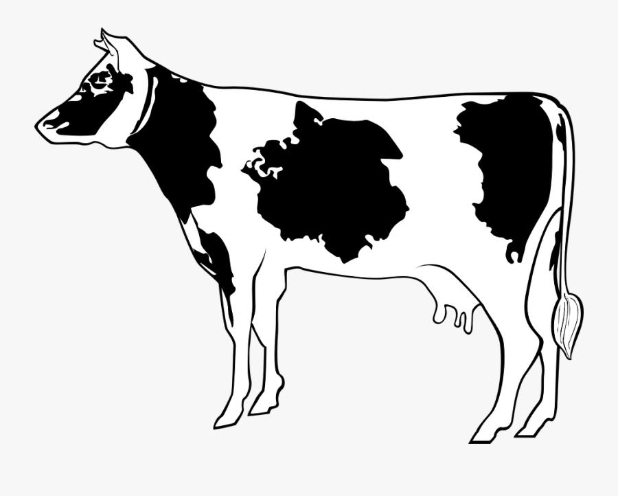 Cow, Livestock, Cattle, Farm, Animal, Beef, Milk - Cartoon Cow Side View, Transparent Clipart