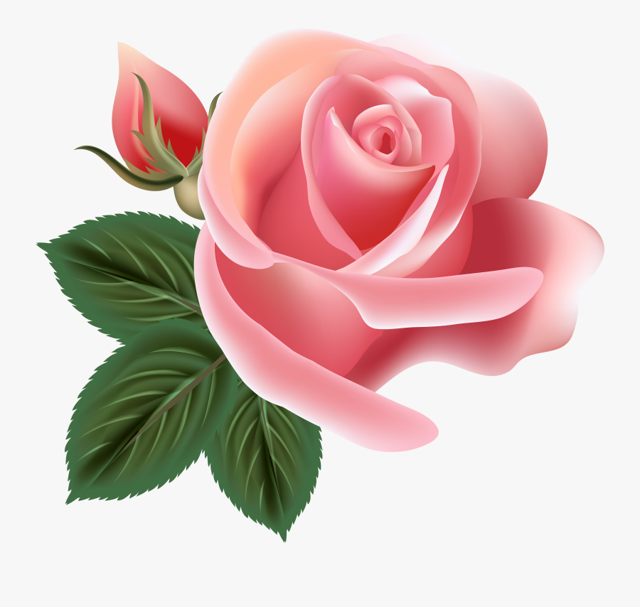 Pin By Татьяна Саенко On Фотошоп - Pink Rose Flower Clip Art, Transparent Clipart