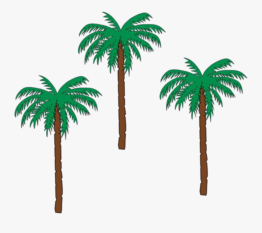 Palm Tree Png 22, Buy Clip Art - Date Palm Tree Cartoon, Transparent Clipart