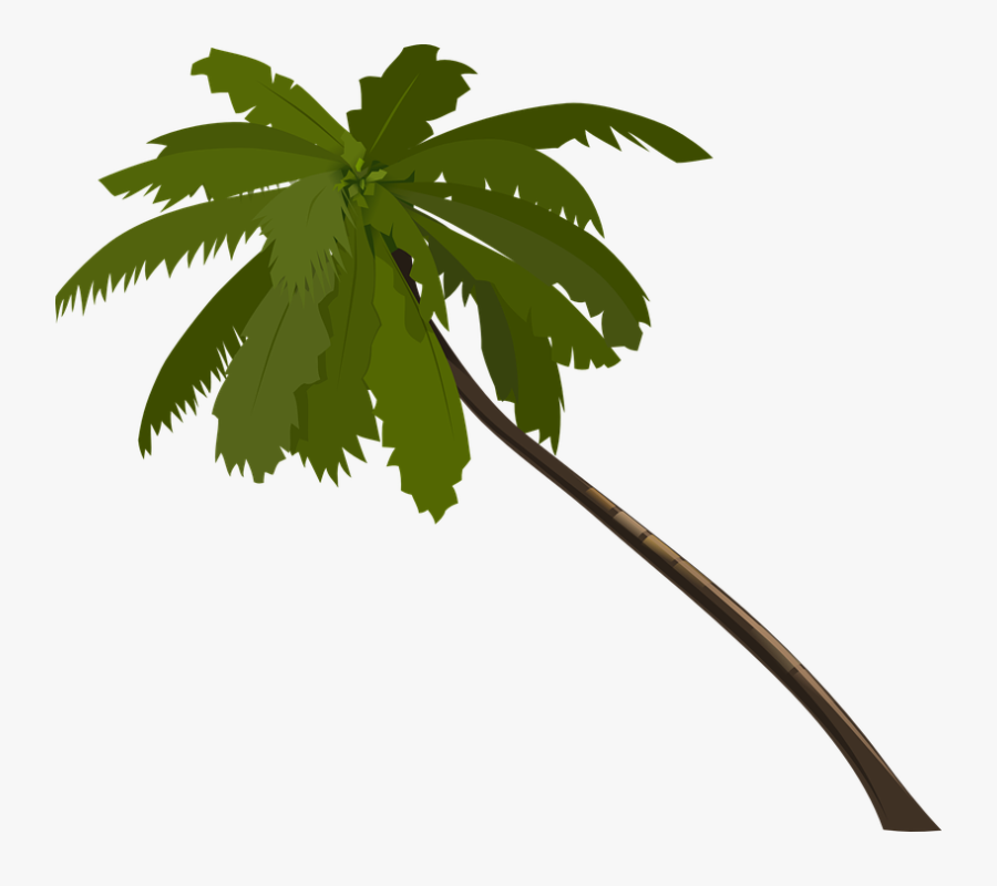 Palm Tree Clipart Brown - Palm Tree Animated Png, Transparent Clipart