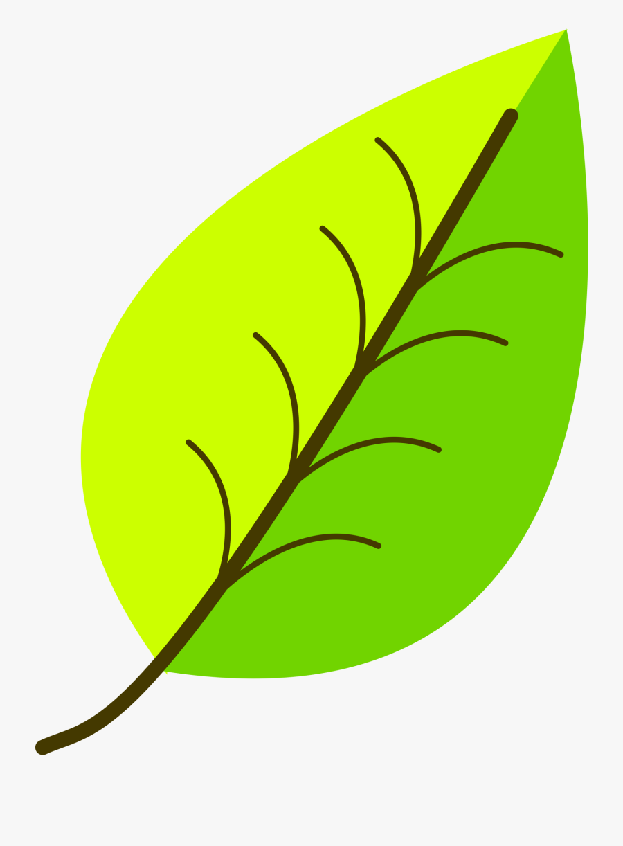 Leaves Drawing With Color, Transparent Clipart