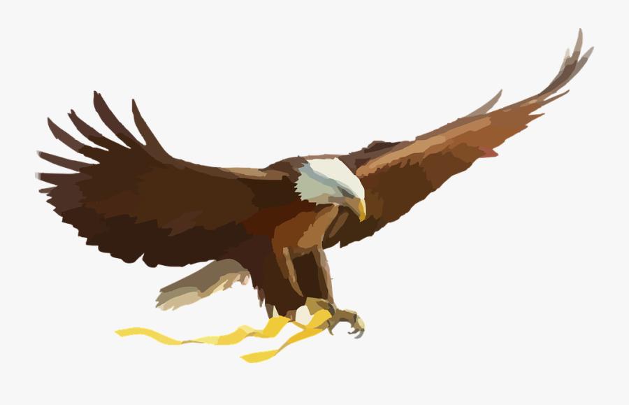 Eagle Clipart Bird - Philippine Eagle Flying Vector, Transparent Clipart