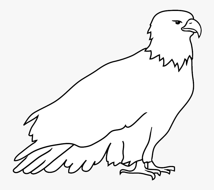 Outline Sketch Of Bald Eagle - Outline For Bald Eagle, Transparent Clipart