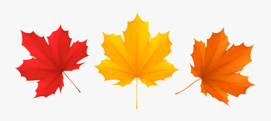 View Full Size - Fall Leaves Transparent Background, Transparent Clipart