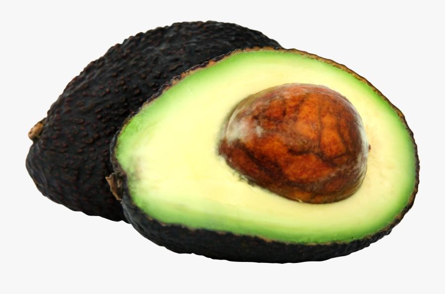 Avocado Clip Art - Fresh Avocado Png, Transparent Clipart