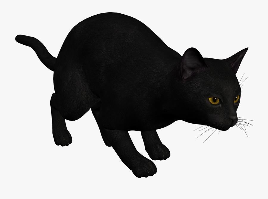 Cat Black Png Clipart Clipart Image - Cat Pouncing Illustration, Transparent Clipart