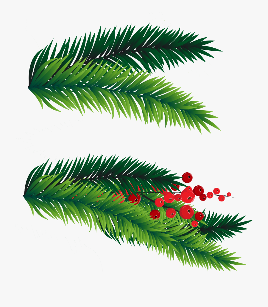 28 Collection Of Christmas Tree Branches Clipart - Christmas Tree Branch Clipart, Transparent Clipart