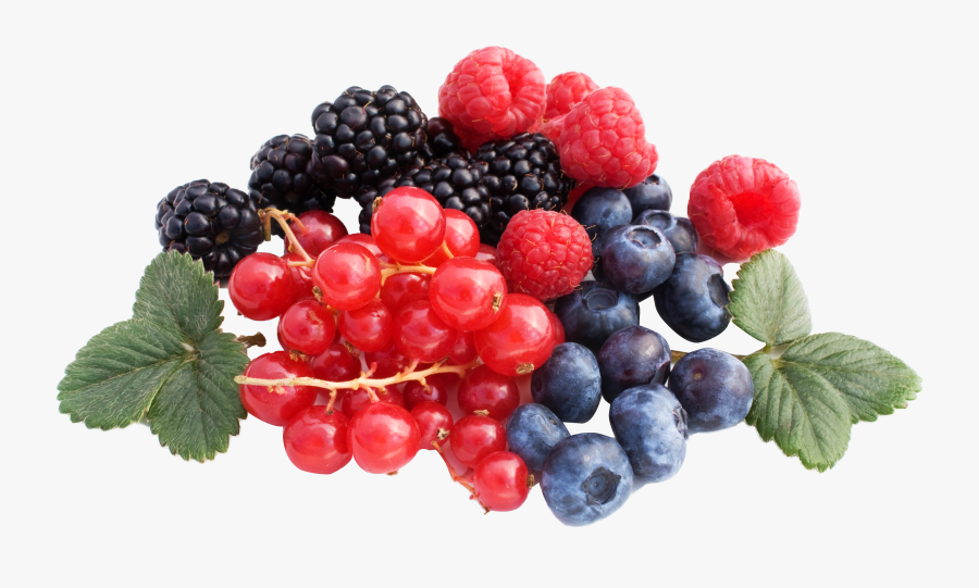 Clip Art Free Images Toppng Transparent - Berries Png, Transparent Clipart