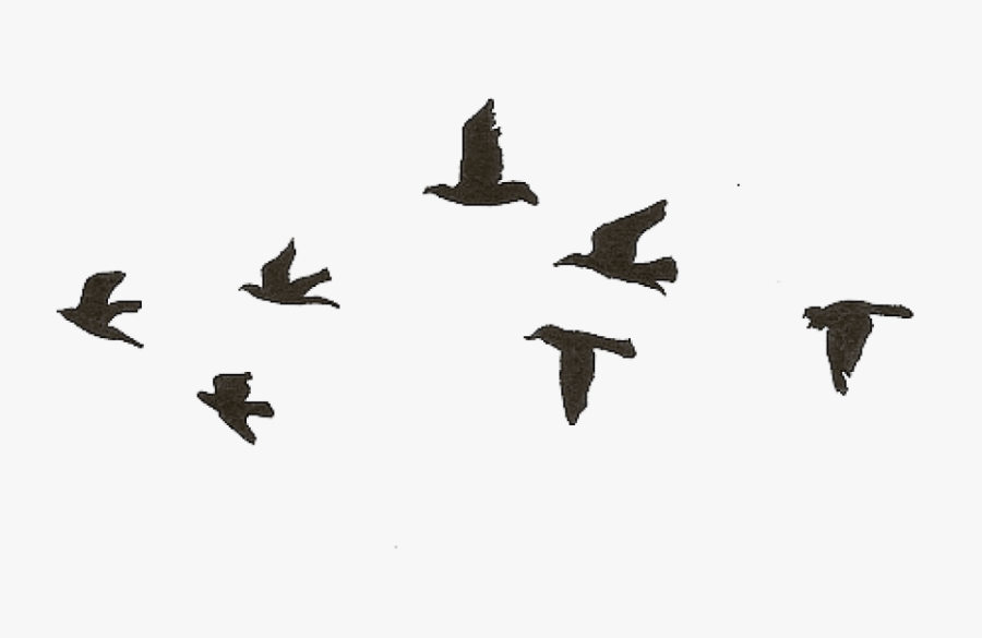 Free Png Download Flying Birds Gif Transparent Png Simple Black Bird Drawing Free Transparent Clipart Clipartkey