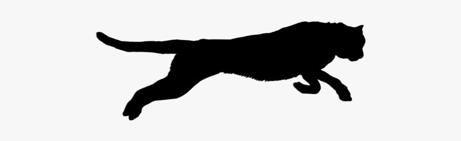 Black Jaguar Animal Jumping Clipart Transparent Background - Cat Jumps, Transparent Clipart