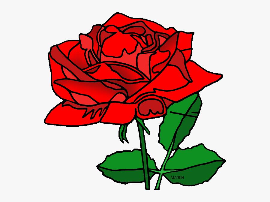 District Flower Of Washington Dc, Transparent Clipart