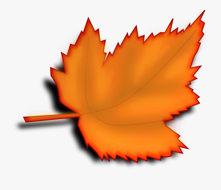 Plant,flower,leaf - Leaf Clipart Transparent Background, Transparent Clipart