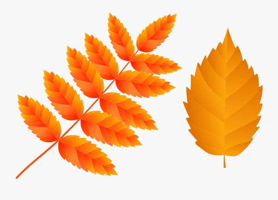 Clipart Fall Orange Leaf - Illustration, Transparent Clipart