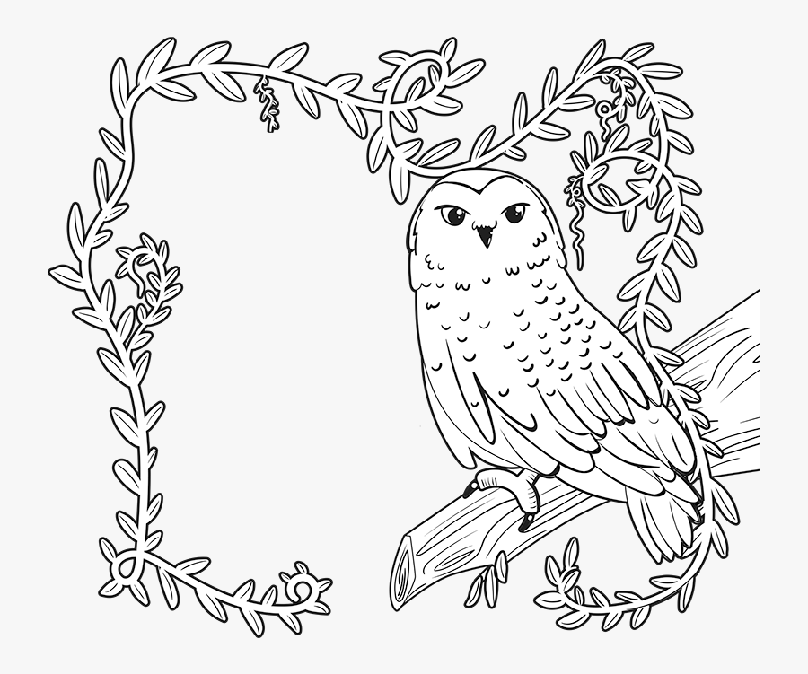 - Enchanted Forest Book Fair Coloring Page , Free Transparent Clipart -  ClipartKey
