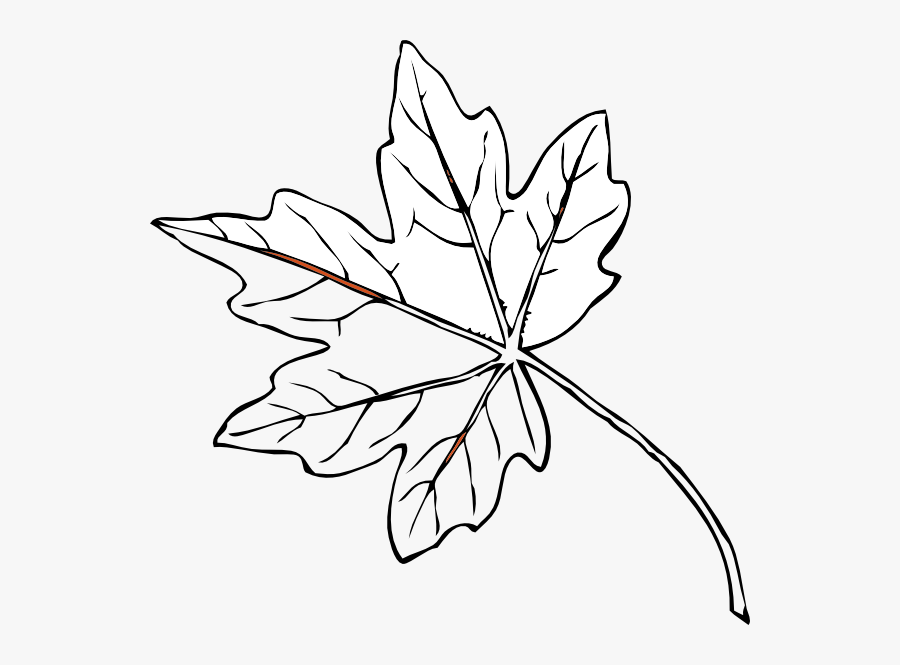 Transparent Leaves - Maple Leaves Black And White, Transparent Clipart