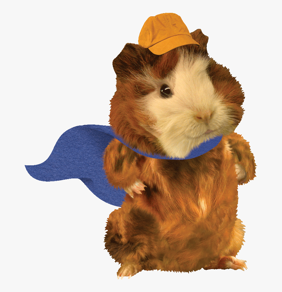 Linny Nickelodeon Universe Wonder Pets Png Free Transparent Clipart Clipartkey