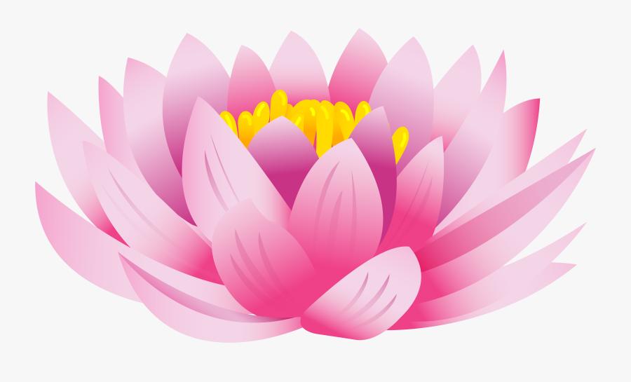 Transparent Lotus Blossom Clipart - Lotus Flower Images Png, Transparent Clipart