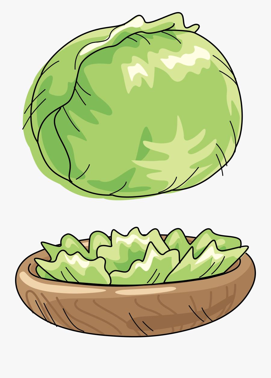Cabbage Cartoon Clip Art, Transparent Clipart