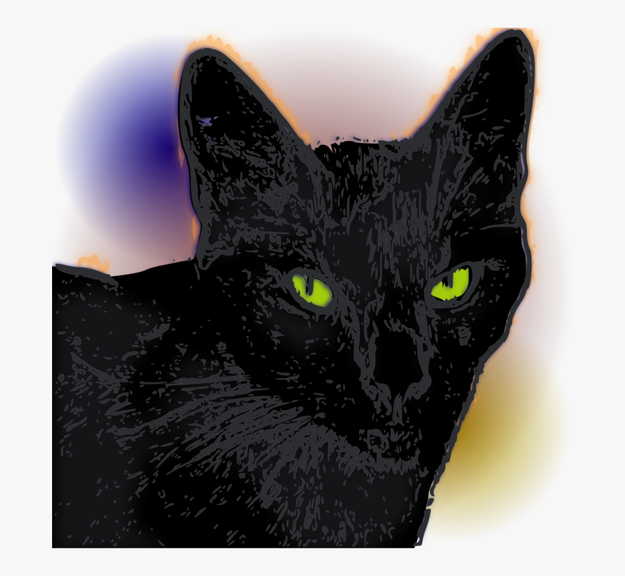 Domestic Short Haired Cat,snout,small To Medium Sized - Black Cat, Transparent Clipart