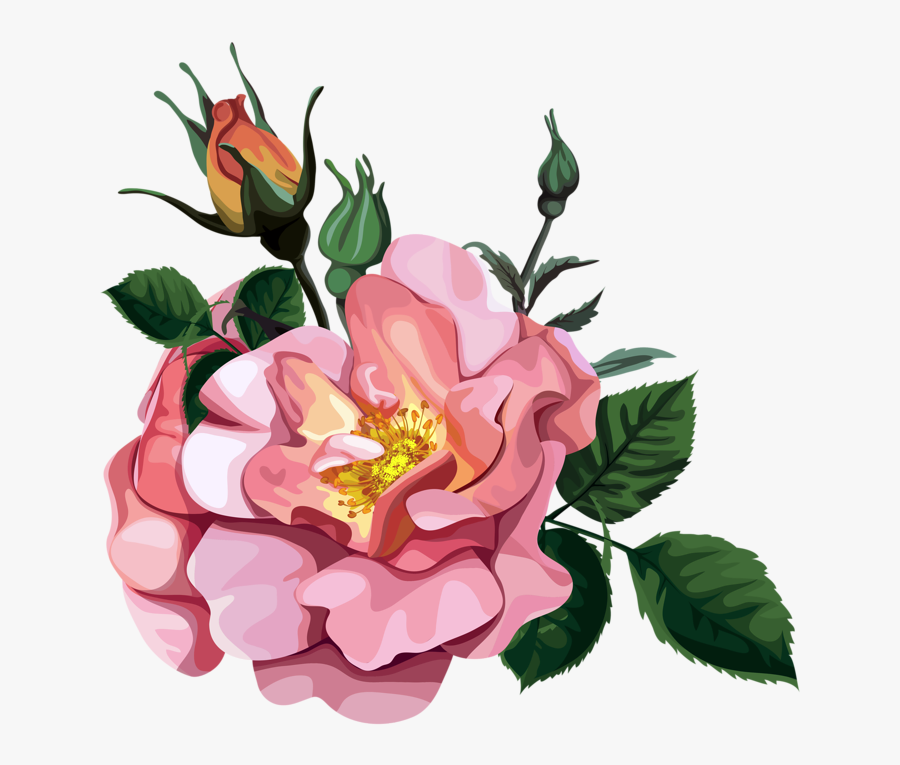 Rose Bouquet Cli̇part Transparent - Flower Transparent Design Clipart, Transparent Clipart