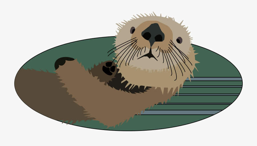 Sea Otter Face Cartoon, Transparent Clipart