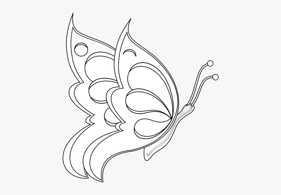 Butterfly 19 Black White Line Art 555px - Drawing Of A Butterfly Sitting On A Flower, Transparent Clipart