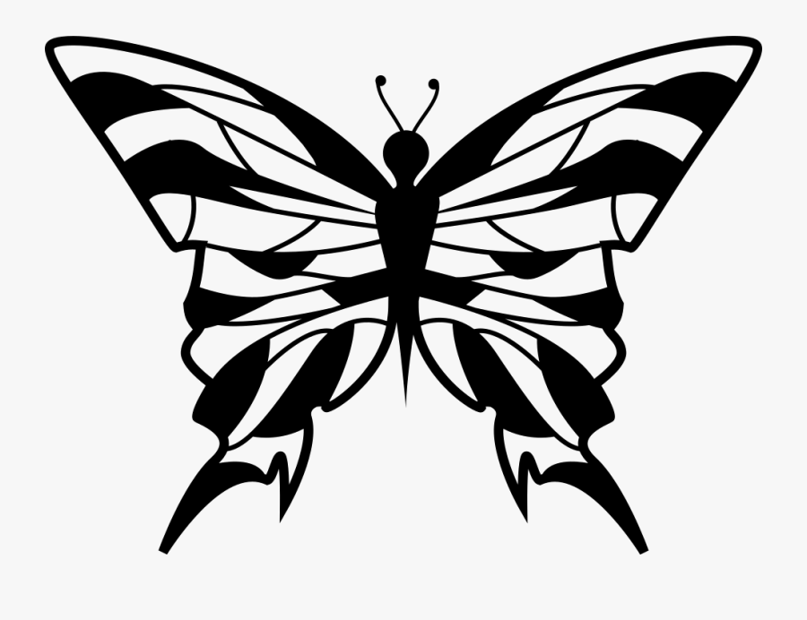 Clip Art Butterfly Top View - Portable Network Graphics, Transparent Clipart