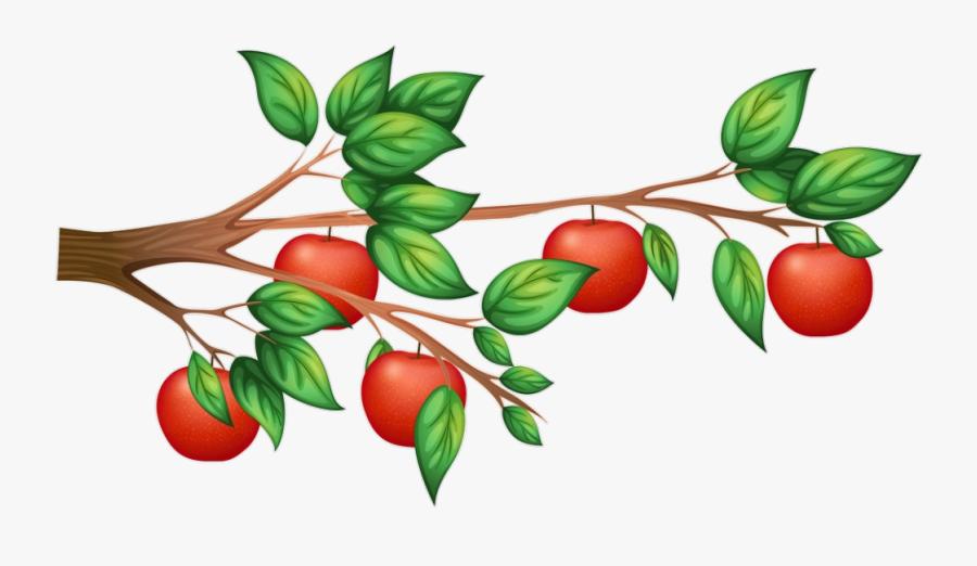 #شجرة #عشب #تفاح #apple #tree #garden - Apple Tree Branch Clip Art, Transparent Clipart