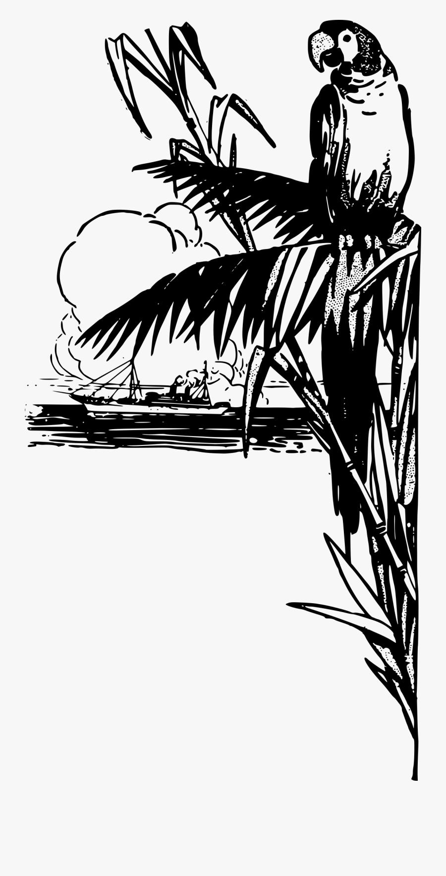 Tropical Parrot - Black White Tropical Art, Transparent Clipart