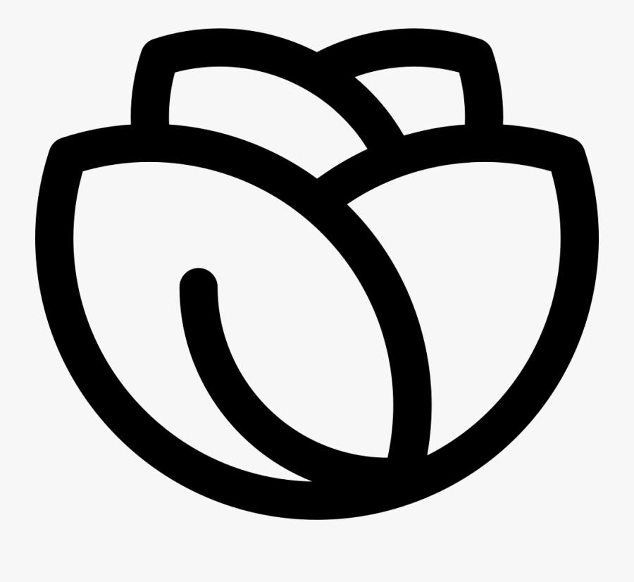 Romaine Lettuce - White Lettuce Icon Png, Transparent Clipart