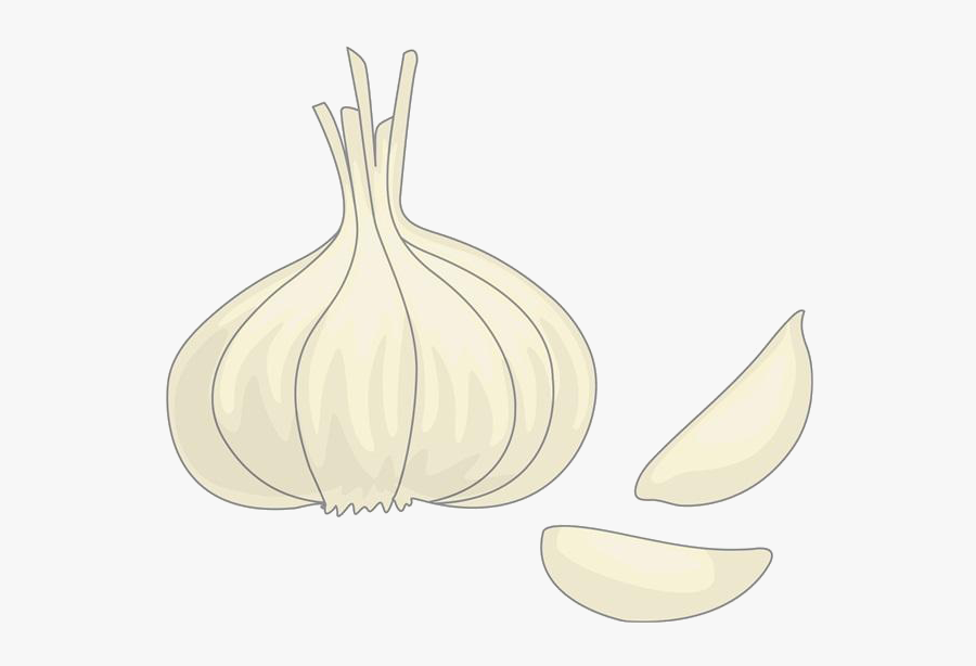 clip art garlic cartoons garlic transparent cartoon free transparent clipart clipartkey clip art garlic cartoons garlic