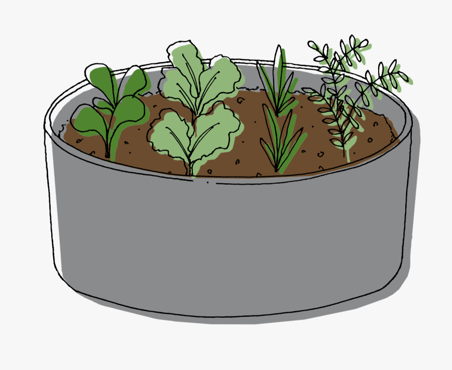 Raised Bed - Illustration, Transparent Clipart