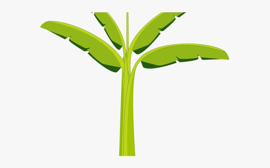 Leaf Clipart Banana Tree - Banana Trunk Clip Art, Transparent Clipart