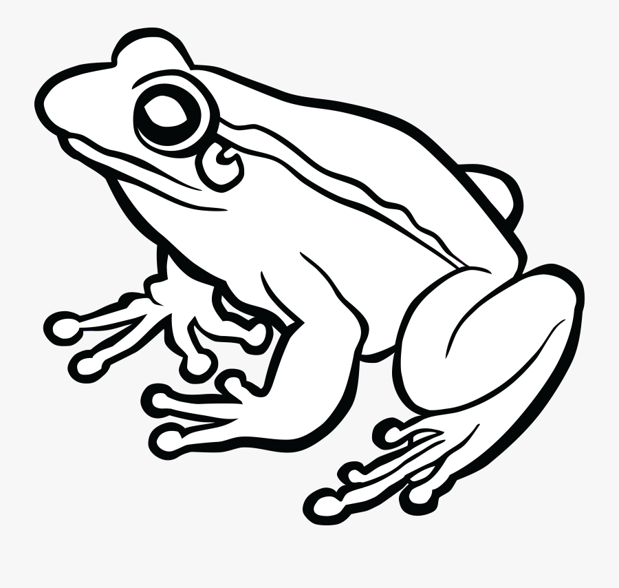 Frog Black And White Png, Transparent Clipart