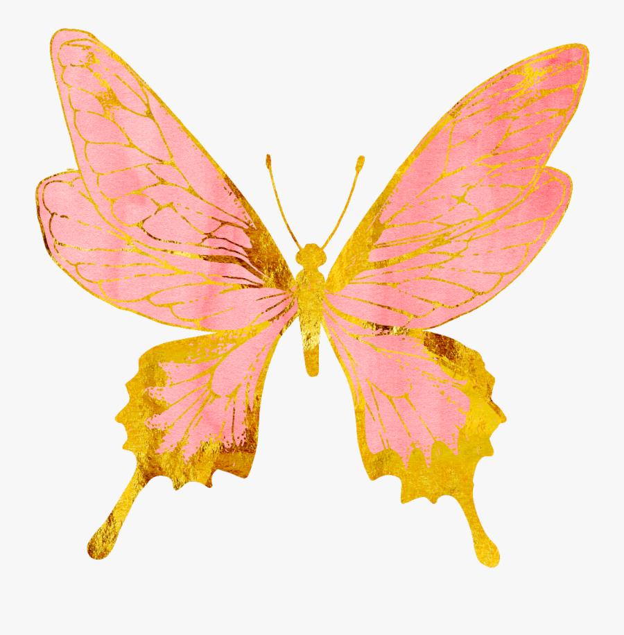 Pink And Gold Butterfly, Transparent Clipart