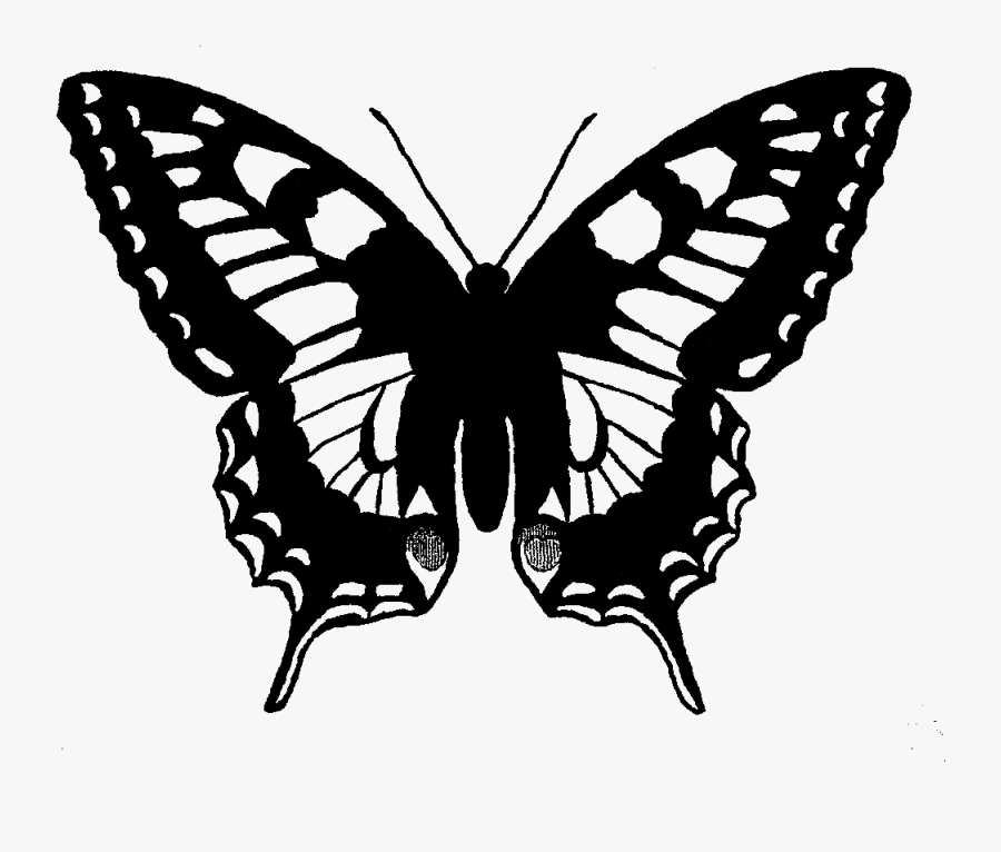 Digital Butterfly Clip Art Machaon Butterfly- - Black Swallowtail Butterfly Drawing, Transparent Clipart