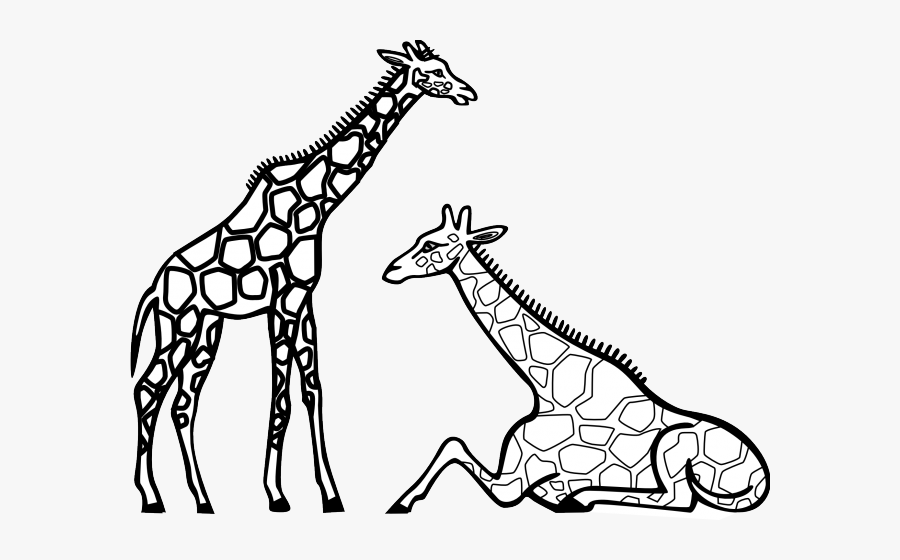 Zebra Clipart Zoo Animal - Giraffes Clipart Black And White, Transparent Clipart