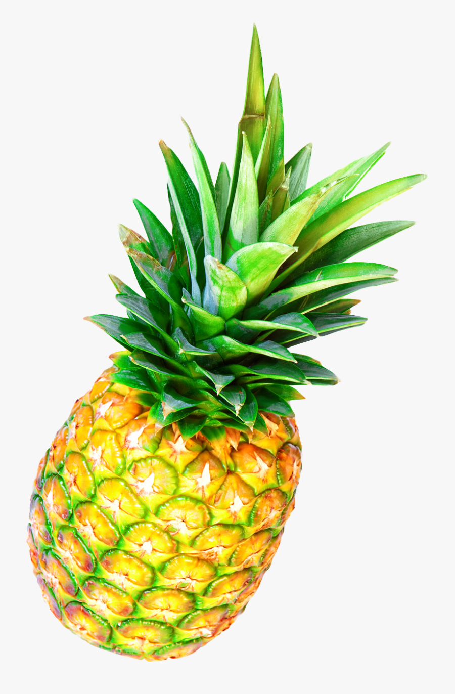 Pineapple Fruit Png Image Clipart , Png Download - Pineapple Transparent Background Png, Transparent Clipart