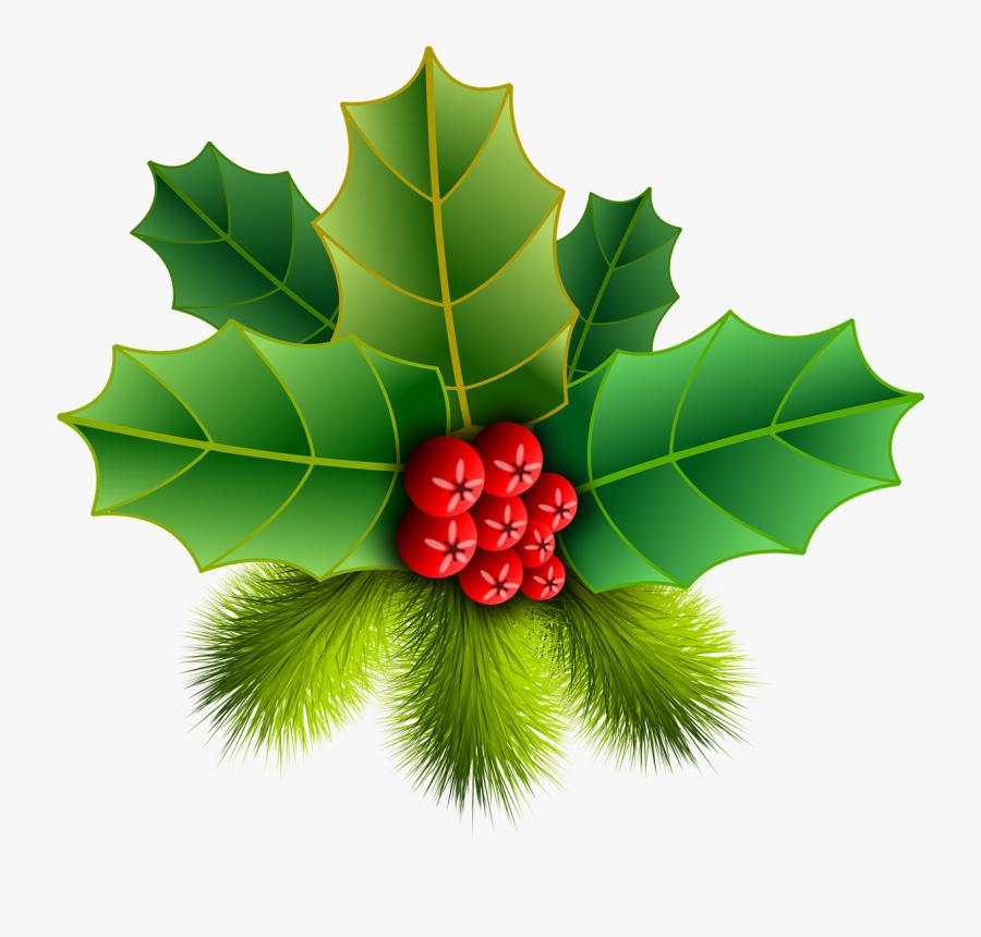 Holly Images - ต้น ฮ อ ล ลี่ วัน คริสต์มาส, Transparent Clipart