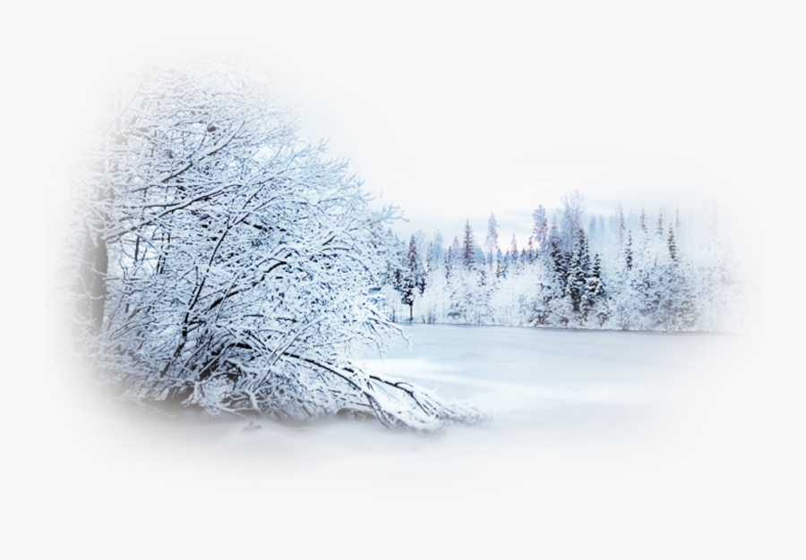 Walking Dog Illustration Background In Winter Snow, Snow, Take A Walk,  Wathet PNG Transparent Clipart Image and PSD File for Free Download