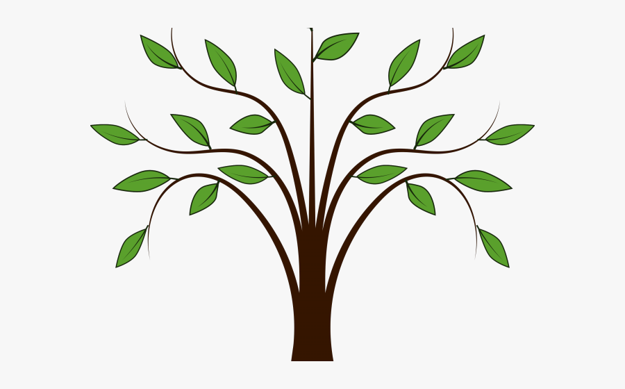 Transparent Vines Clipart - Trees And Leaves Clipart, Transparent Clipart