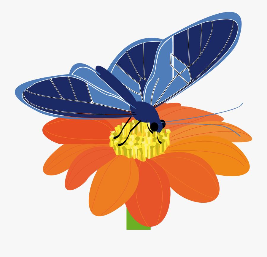 Blue Flower Clipart Big Flower - Butterfly On A Flower Clip Art, Transparent Clipart