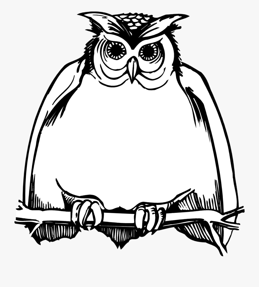 Horned Owl Clipart Black And White - Harry Potter Owl ...