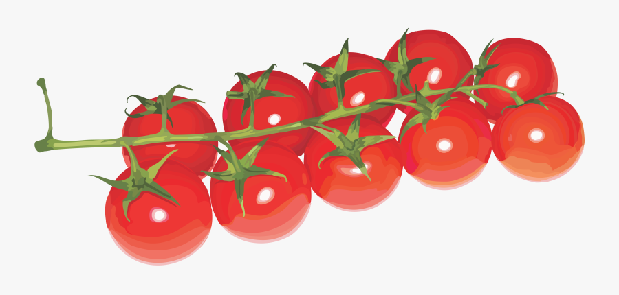 Tomatoes Cherry Png - Cherry Tomatoes Transparent Background, Transparent Clipart