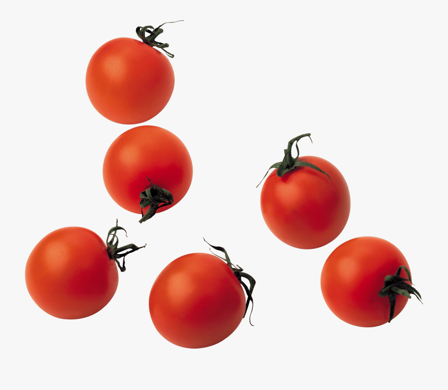 Download Tomato Png Image Hq Png Image - Cherry Tomato Transparent Png, Transparent Clipart